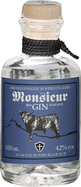 Monsieur GIN SCHLEHE 42% Vol., 100 ml